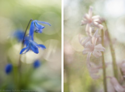 Links F2.8, Rechts F2.8